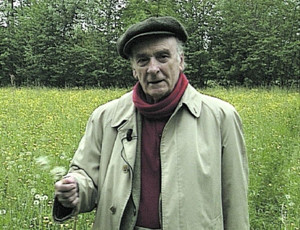 Poesia e filosofia: Andrea Zanzotto